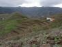 Teneriffa November 2008